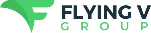 flying v group logo